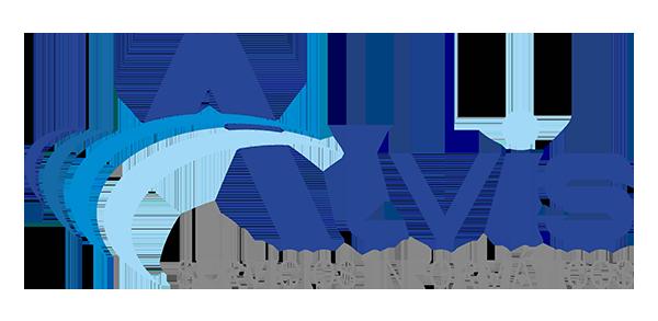 Alvis SL · Servicios Informáticos en El Puerto de Santa María